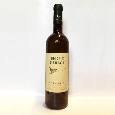 vino bianco terre di gerace calabria solidale
